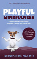 playful-midfulness